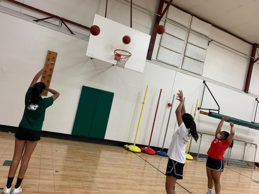Westminster Coaches and Athletes Adapt to New Basketball Protocols