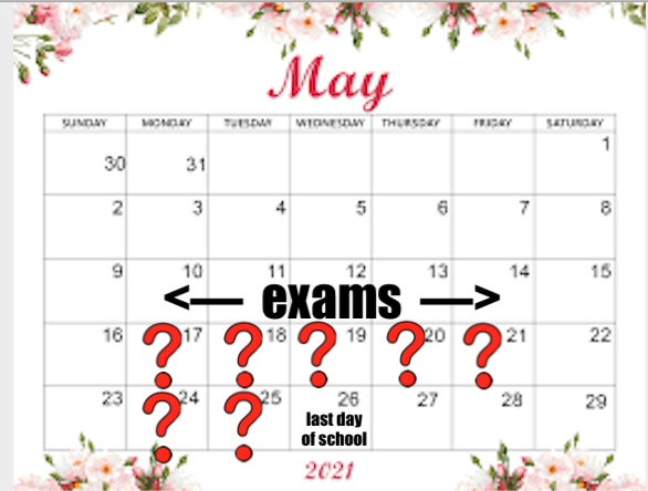 What Will Students Do After Exams?